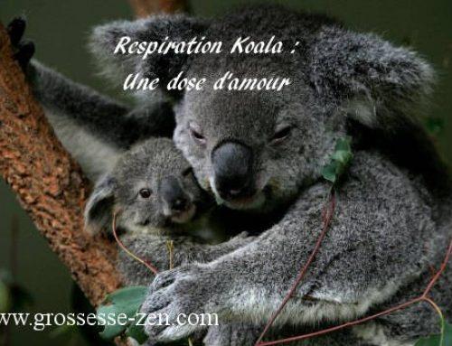 La respiration koala un moment magique