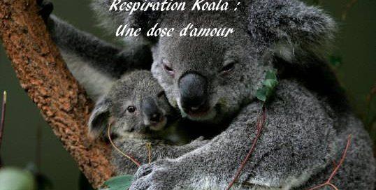 respiration-koala-grossesse-zen